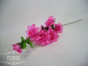 Ветки, одиночные цветы